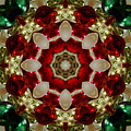 Red Gold Green Kaleidoscope 2 by Chandra Nyleen