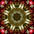 Red Gold Kaleidoscope 1 by Chandra Nyleen
