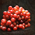 Red Grapes by Andee Design