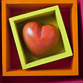 Red Heart In Box by Garry Gay