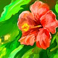 Red Hibiscus by Brian Dahlen