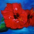 Red Hibiscus by Jenny Lee