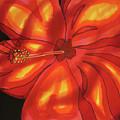 Red Hibiscus 1 by Lee Vanderwalker
