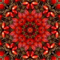 Red Kaleidoscope No. 1 by Lyle Hatch