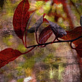 Red Leaves Painted Effect by Debbie Portwood