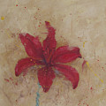 Red Lily by Monica Burnette