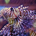Red Lionfish Art by Selena Wagner