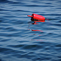 Red Lobster Buoy by Rick Berk