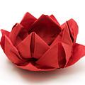 Red Lotus Origami by Fabrizio Troiani
