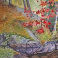 Red Maple Leaves by Debbie Homewood