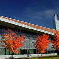 Red Maple Trees And Modern Architecture Of Seneca College York U by Reimar Gaertner