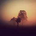Red Mist by Yo Choowa