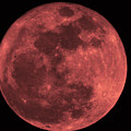 Red Moon by Bill Cannon