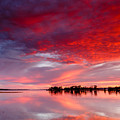 Red Morning by Robert Caddy