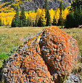 Red Mountain Boulder by Ray Mathis
