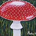 Red Mushroom by Don Parker
