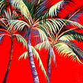 Red Palms by Patricia Rachidi