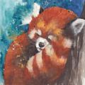 Red Panda Sleeping by Morgan Adams