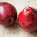 Red Pears by Elle Arden Walby