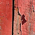 Red Peeling Paint- Fine Art by KayeCee Spain