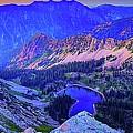Red Pine Panorama by James Zebrack