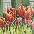 Red Pink Tulips by Sukey Watson