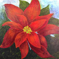 Red Poinsettia by Marsha McAlexander