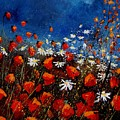 Red Poppies 451108 by Pol Ledent