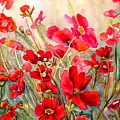Red Poppies by Carole Spandau