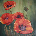 Red Poppies by Elizabeth Bard