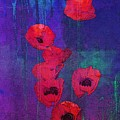 Red Poppies by I'ina Van Lawick