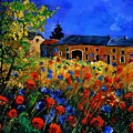 Red Poppies In Houroy by Pol Ledent