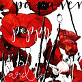 Red Poppies by Mindy Sommers