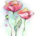 Red Poppies by Olga Shvartsur