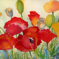 Red Poppies by Peggy Wilson