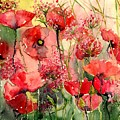 Red Poppies Wearing Pink by Suzann Sines