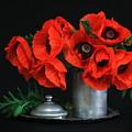 Red Poppy by Dagmar Luhringova