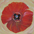 Red Poppy by Rita Fetisov