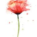 Red Poppy Watercolor by Olga Shvartsur