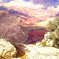 Red Rock by Marna Edwards Flavell