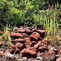 Red Rocks by Esko Lindell
