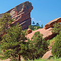 Red Rocks Landscape by Merrimon Crawford