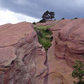 Red Rocks  by Merja Waters