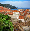 Red Roofs And Rooftop Garden From The City Walls, Dubrovnik, Croatia by Global Light Photography - Nicole Leffer