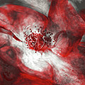 Red Rose by Angela Doelling AD DESIGN Photo and PhotoArt