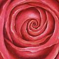 Red Rose Pastel Painting by Karen Kaspar