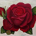 Red Rose by Zina Stromberg