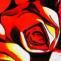 Red Roses by Steve Taylor