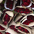 Red Roses Wrapped In Paper Displayed by Keenpress