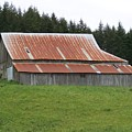 Red Rusty Tin Roofed Old Barn Washington State by Laurie Kidd